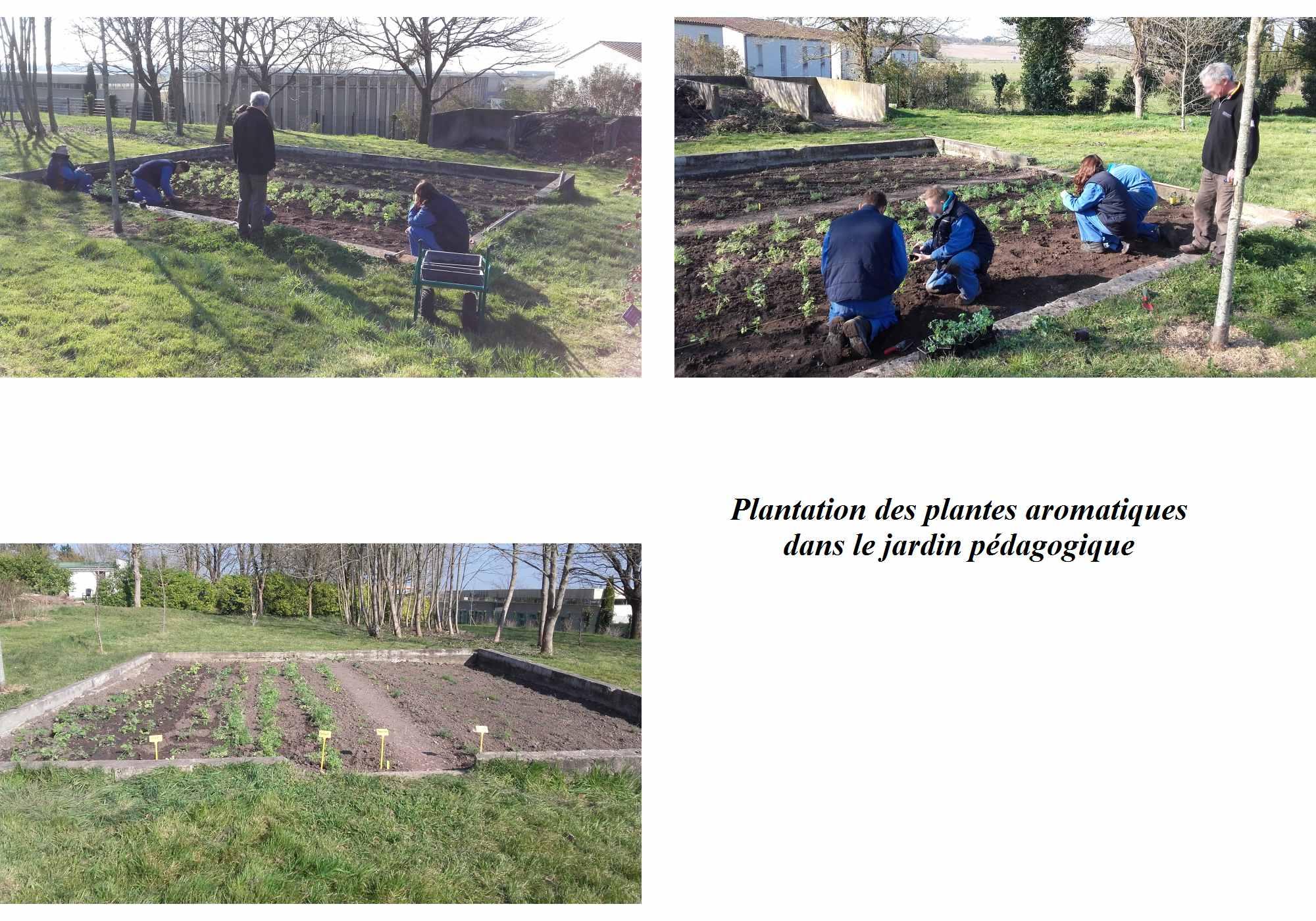 Capa jardinier paysagiste site de l 39 erea th odore monod for Site de paysagiste